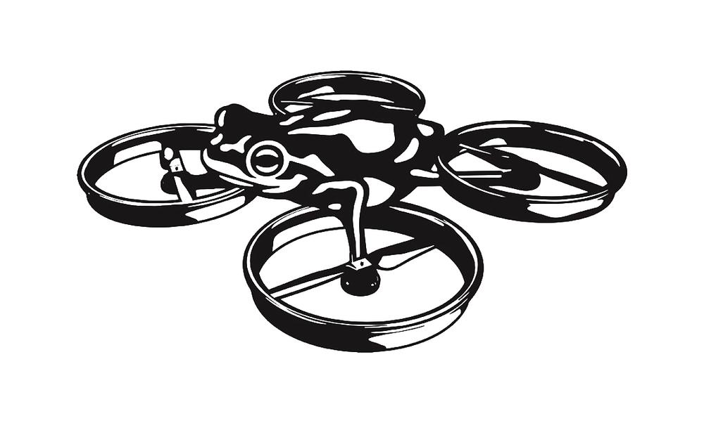 frog_drone.jpg