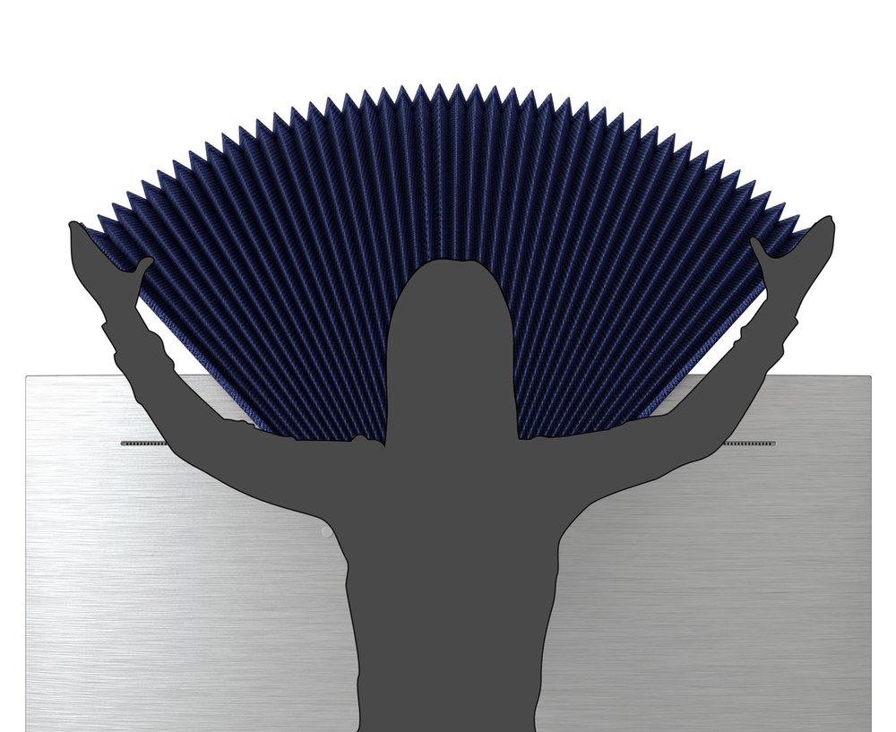 peacock_opening.jpg