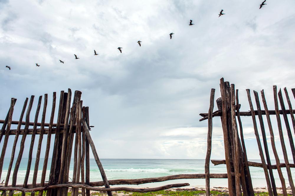 cancun 2013.2014-8-2.jpg