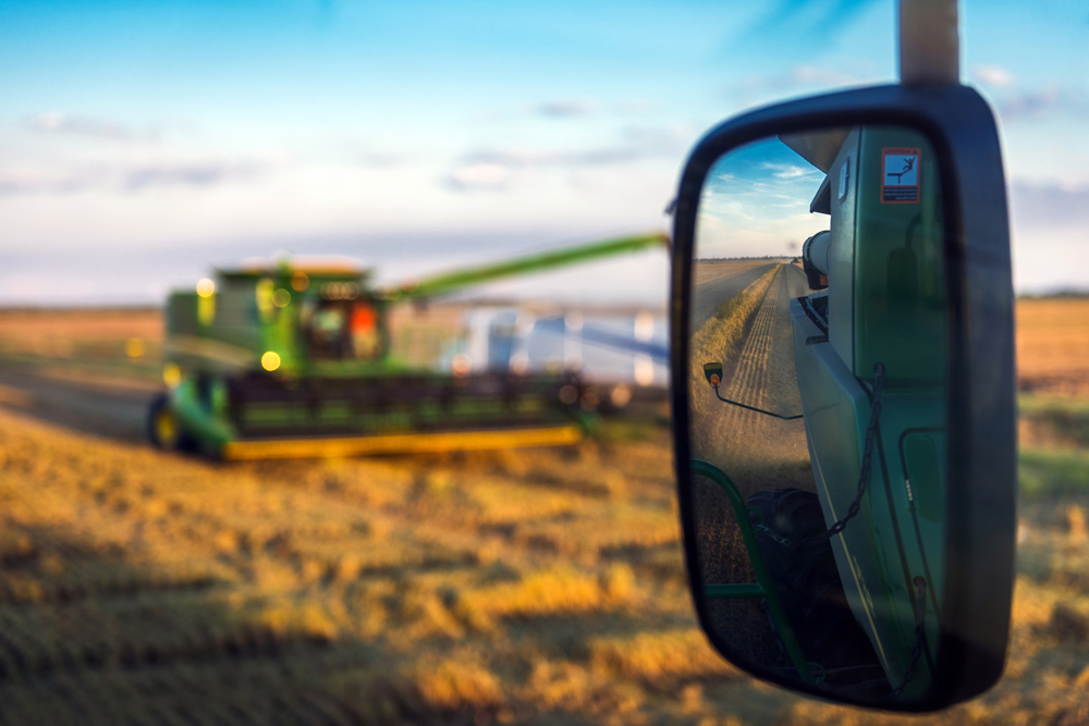 Augzzi farm harvest edits- 6.JPG