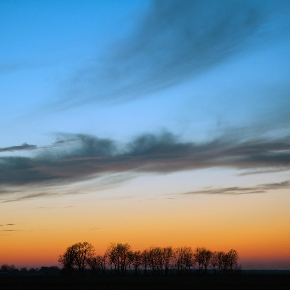 marisol delta sunset-2.jpg