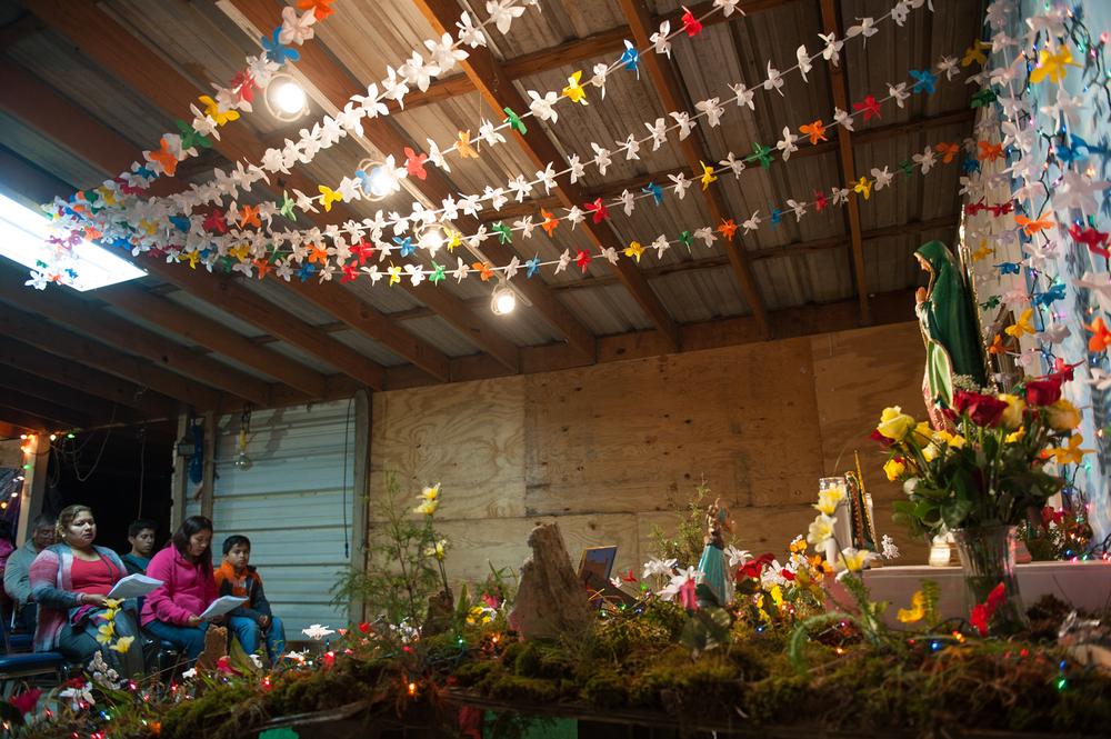 Maria Guadalupe 2015 COMPRESSED-7.jpg