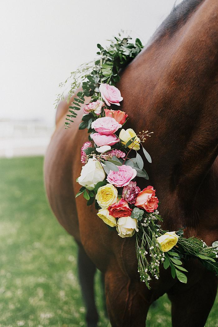 horse-stables-fonthill-008.jpg