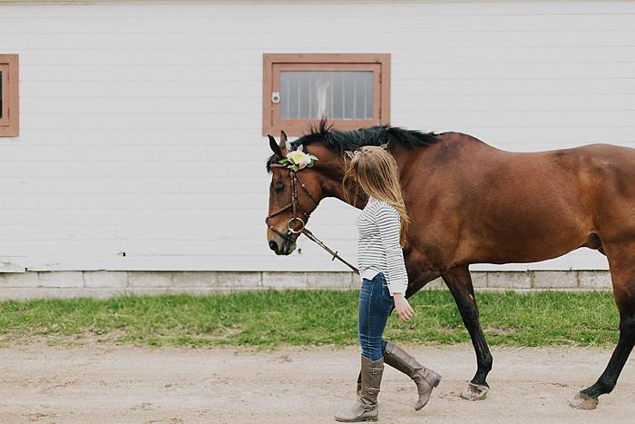 horse-stables-fonthill-046.jpg