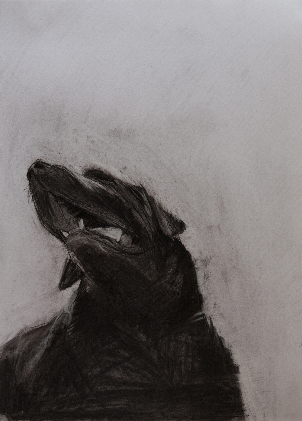 Floyd-black-head-charcoal-p.jpg