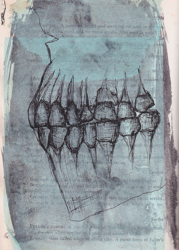 Ink_illustration-12.jpg