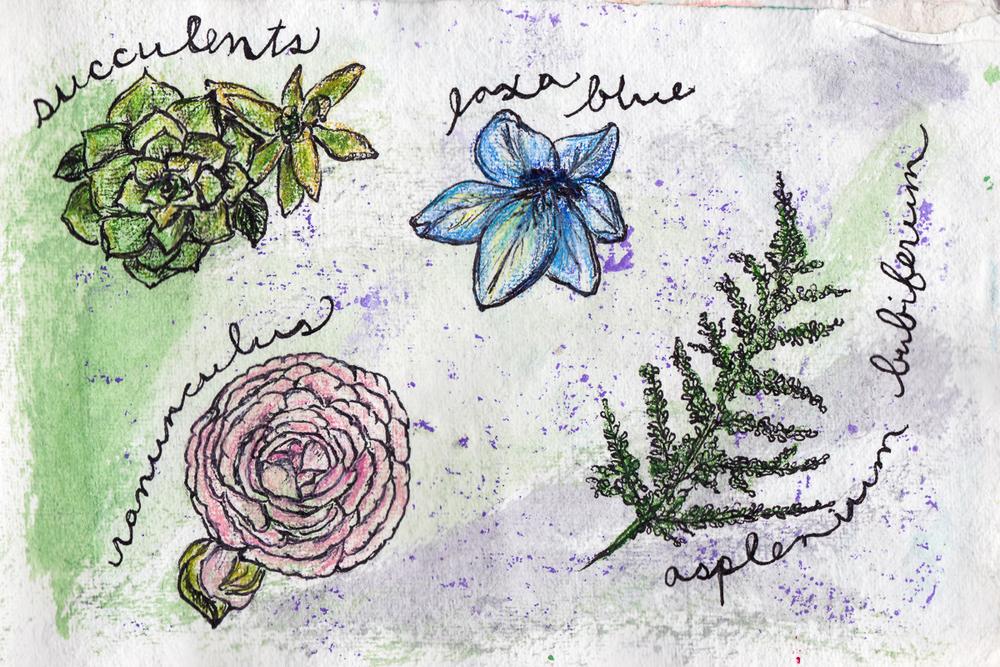 Ink_illustration-20.jpg