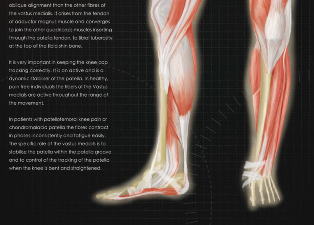 Legs_Mockup_6.jpg