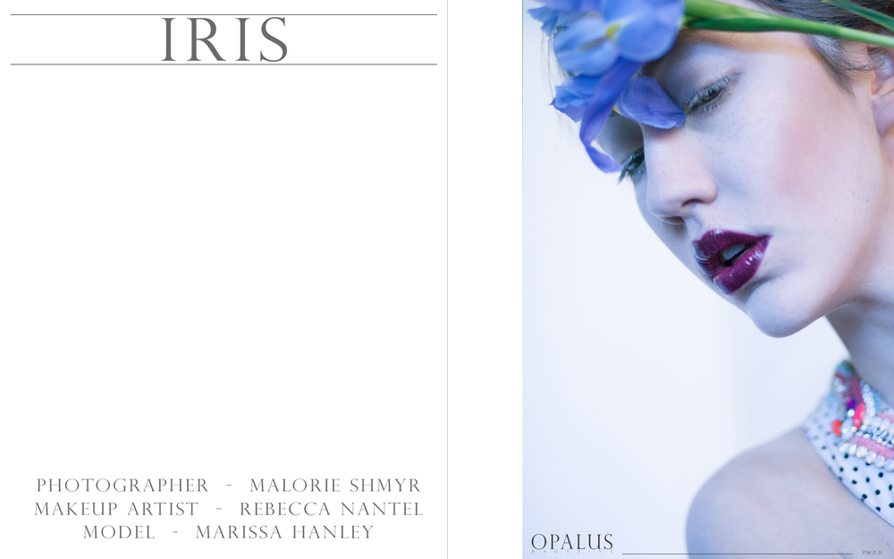 iris_page_1.jpg
