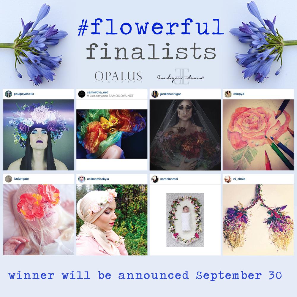 finalists.jpg