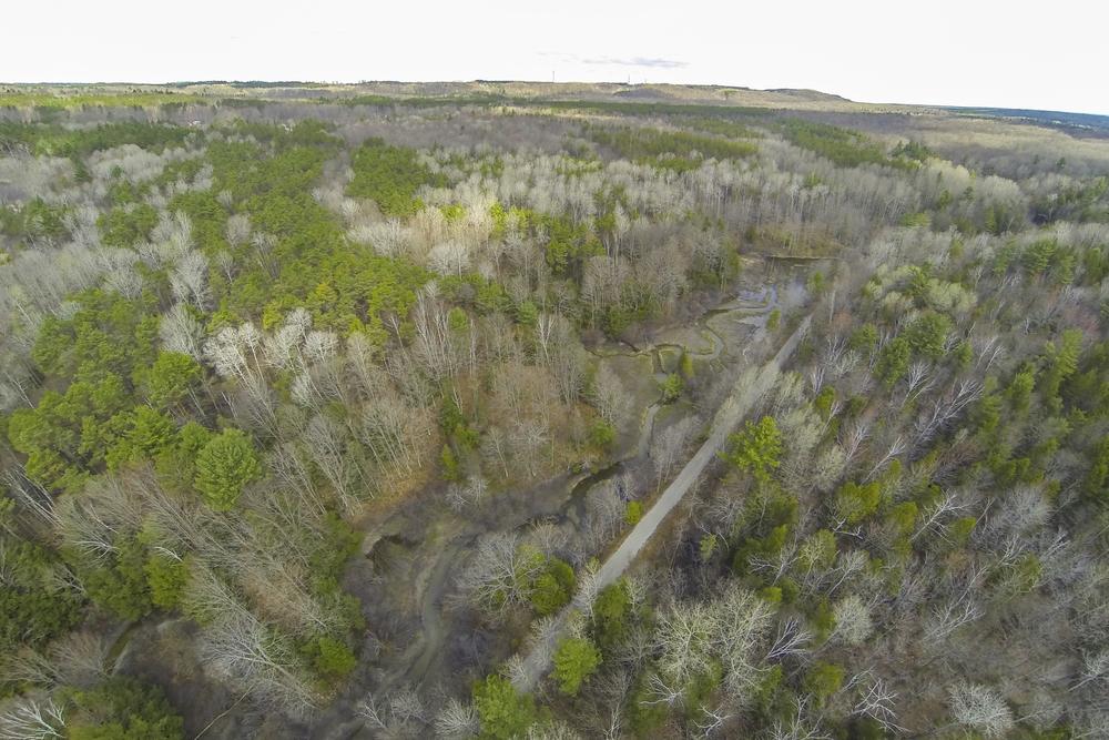49kingfisher_aerial2.jpg
