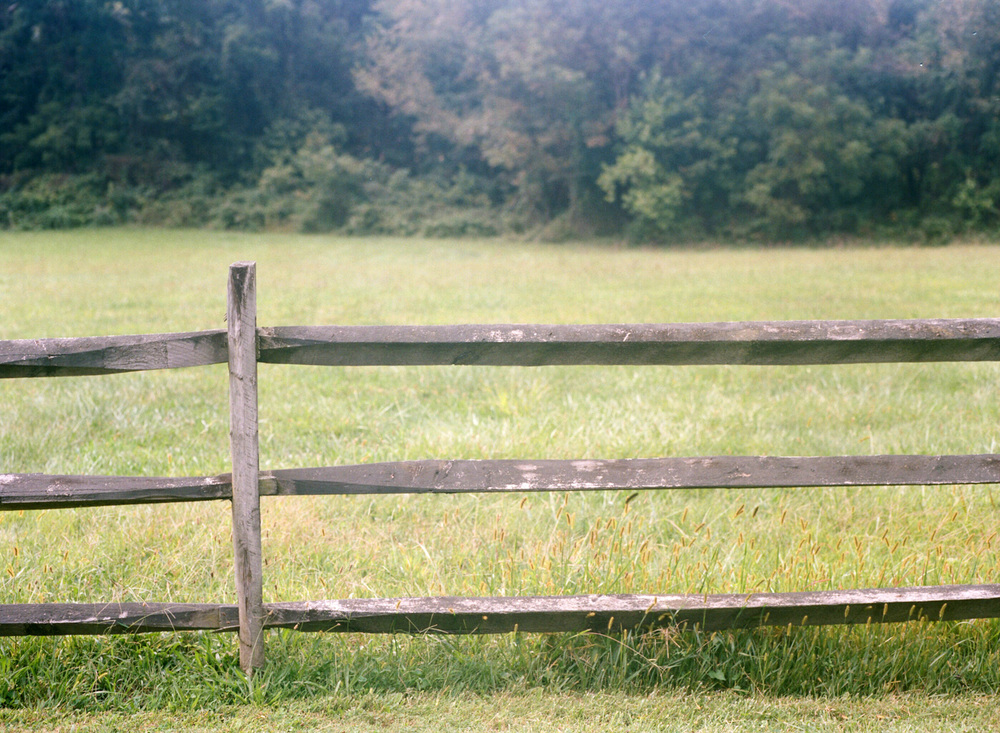 586-oatlands-plantation-virginia-film-wedding-photographer.jpg