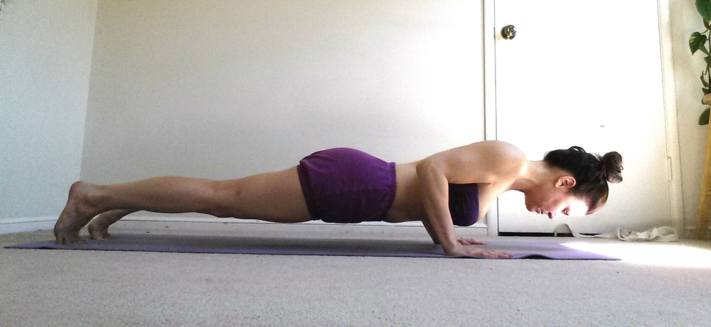 Chaturanga Dandasana, four limbed staff pose