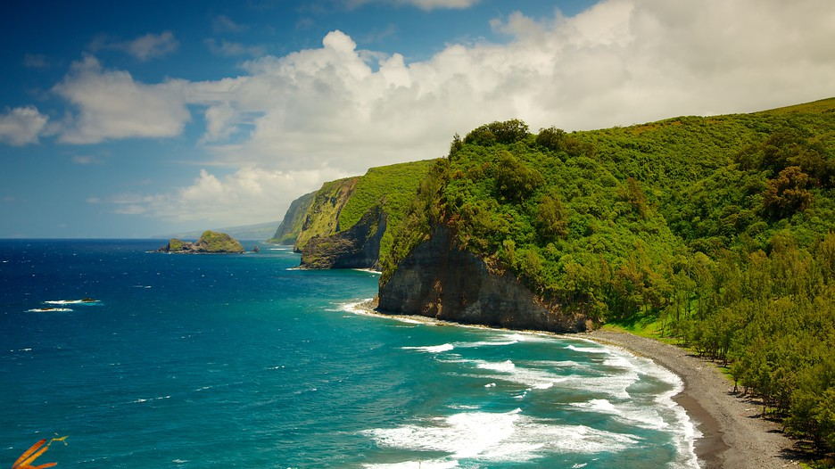 Pololu-Valley-Overlook-big island.jpg
