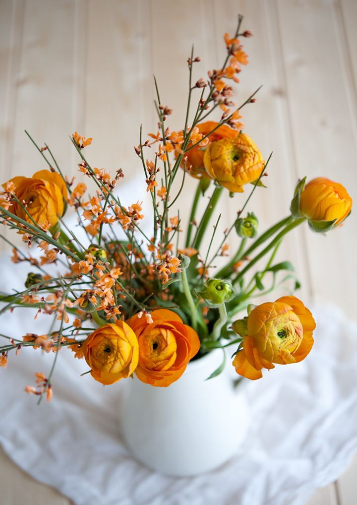 radostina_photography_spring_orange_flowers.png
