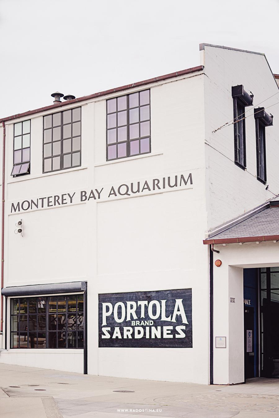 radostina_monterey_bay_aquarium_00.png