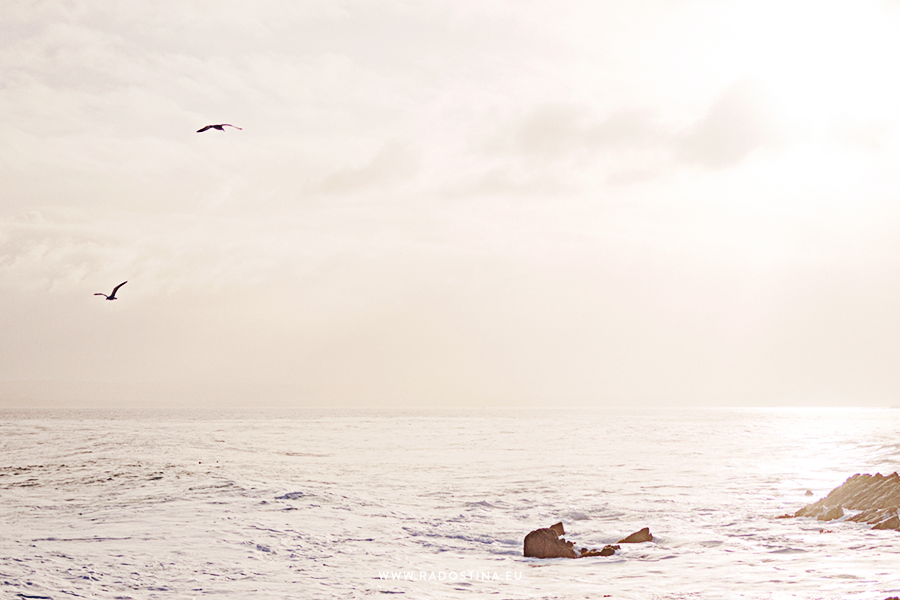 radostina_surfers_03.png