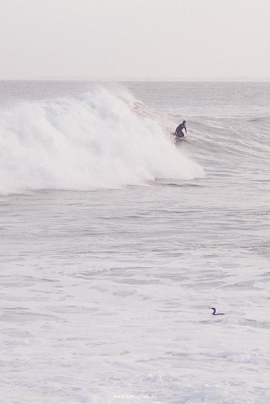 radostina_surfers_06.png