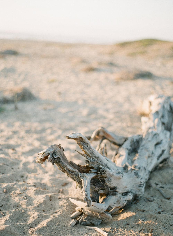 Moss landing, California