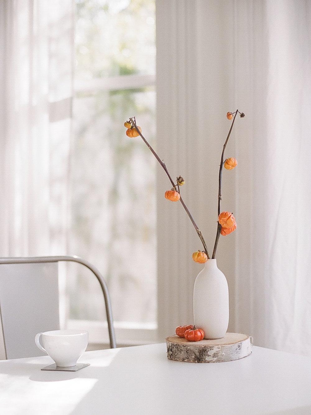 radostina_boseva_magnolia_rouge_27_my_favorite_image.jpg