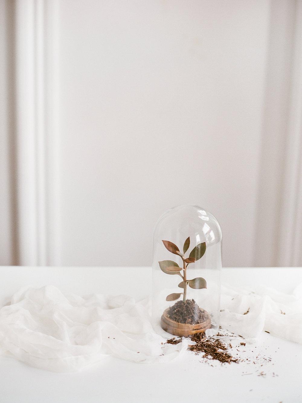 wedding minimal inspiration