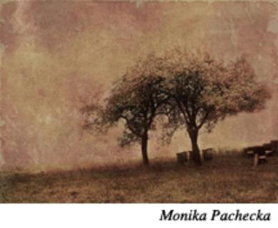 Monika Paches