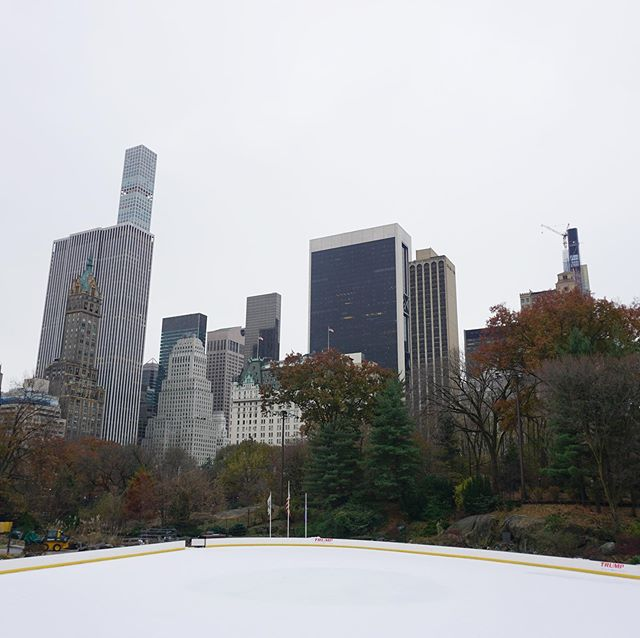 A clear ice rink in Central Park ⛸