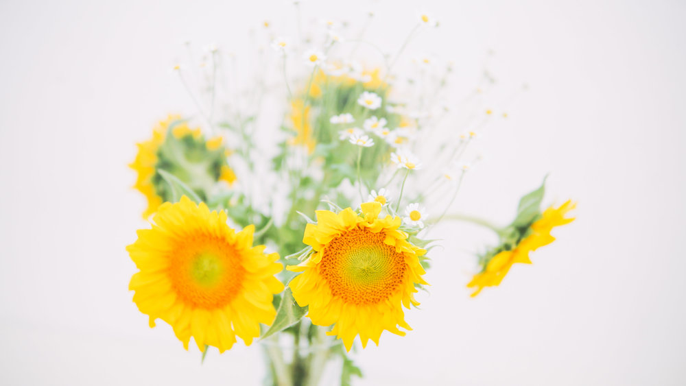 Body Positivity + Bloom Freely-0007.jpg