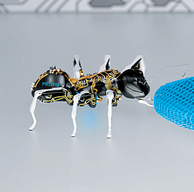 A Swarm Of Robot Insects