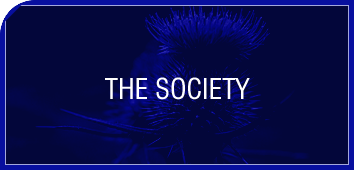 FEATURED SOCIETY copy.png