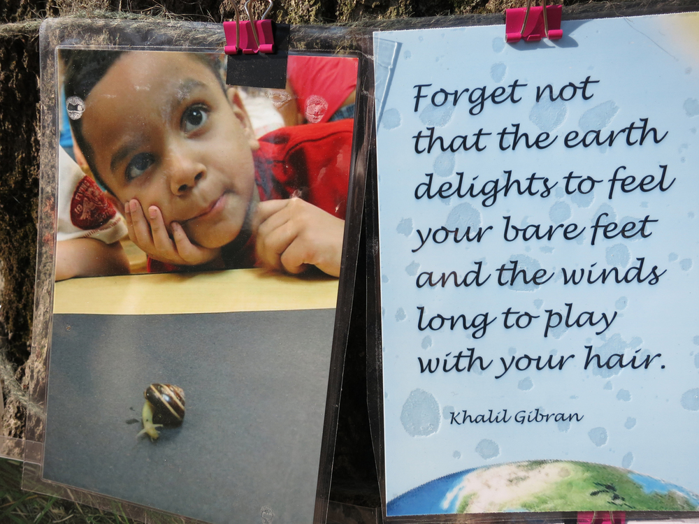 "May 5 / New addition by a visitor to the communiTree, a quote by Kahlil Gibran, ""Forget not that the earth delights to feel your bare feet and the winds long to play with your hair."""