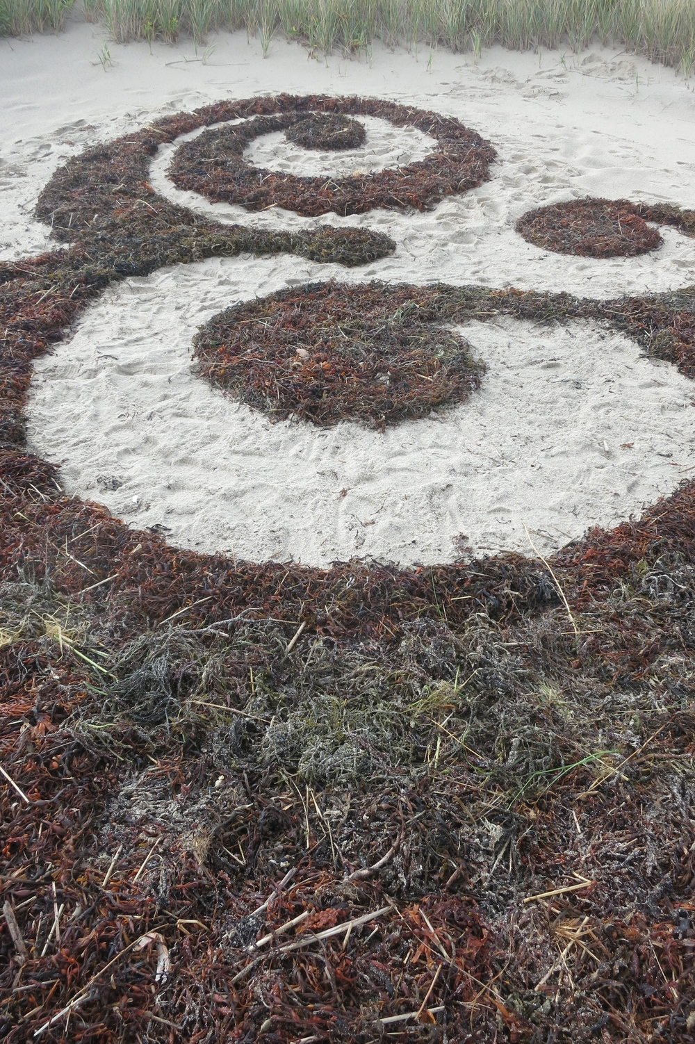 2014 / Ampersand / Materials: seaweed / Size: 20 feet high by 15 feet wide