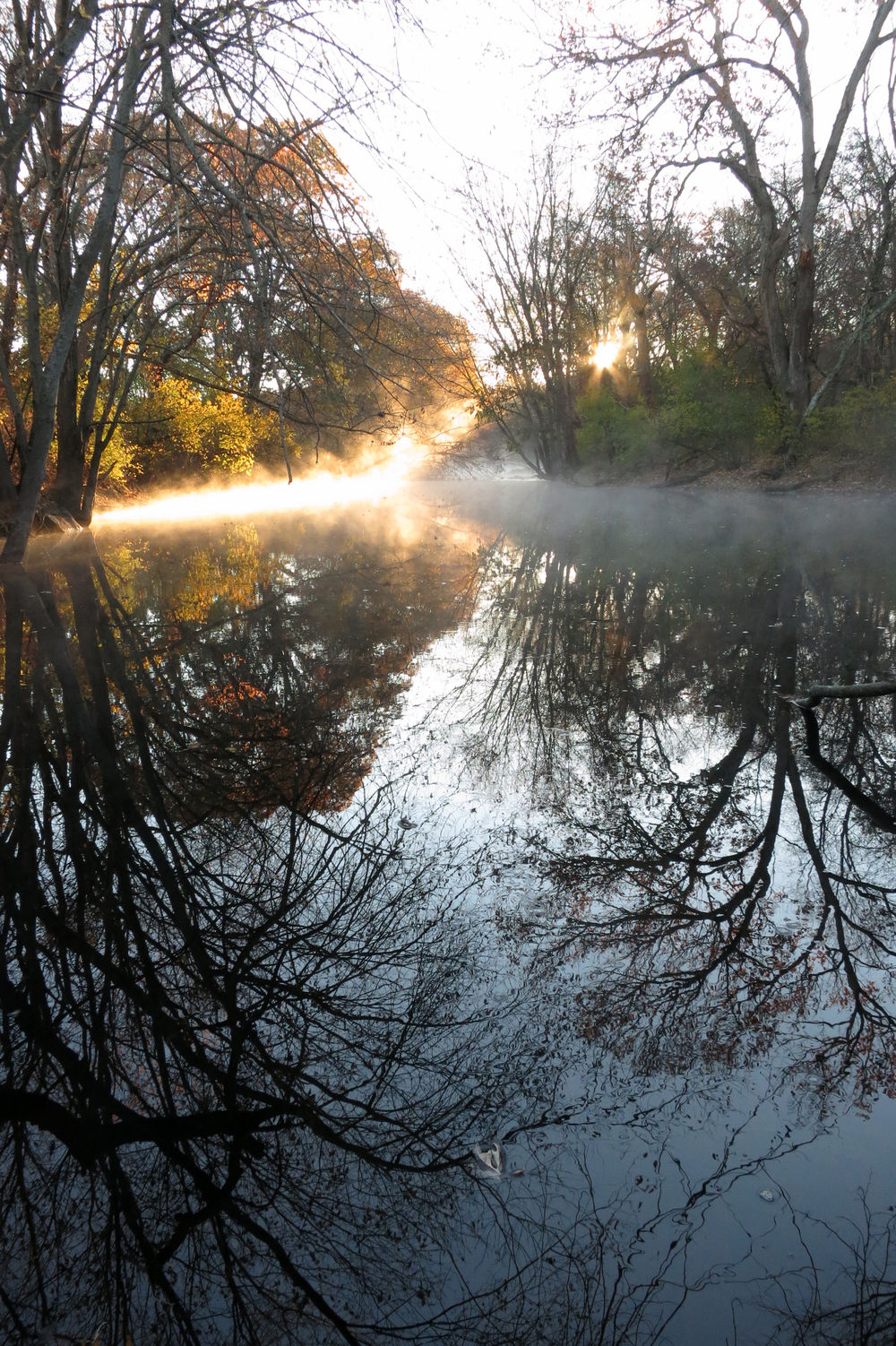 Sunrise / Fall 2015 / Assabet River