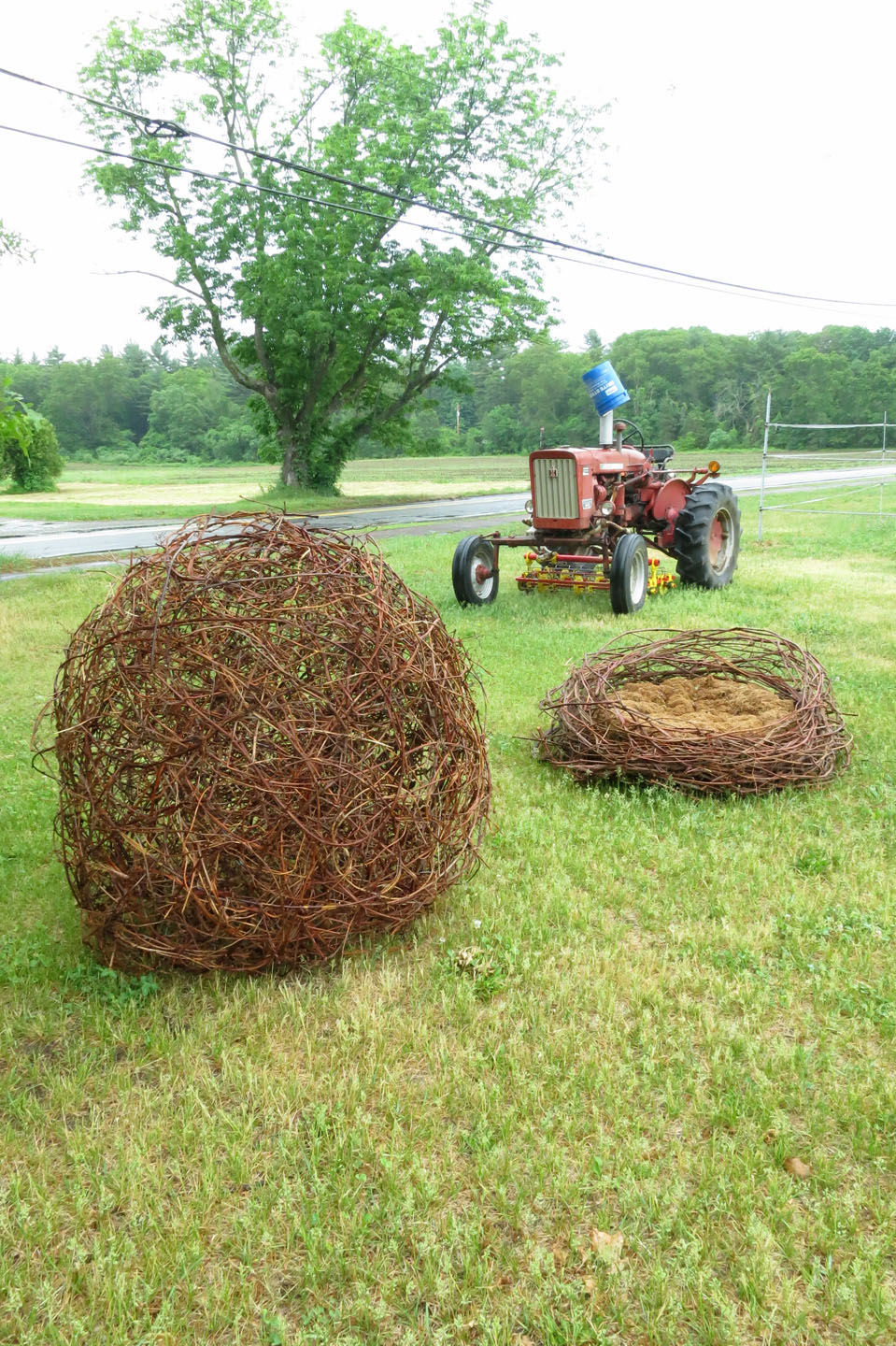 Farm Picnic_Vine Egg and Nest.jpg