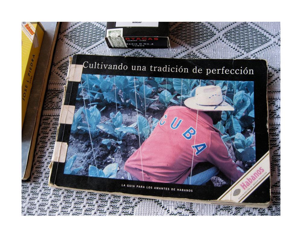 Cigars_11x14.jpg