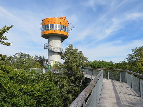 Find interesting locations on the Baumkronenpfad.