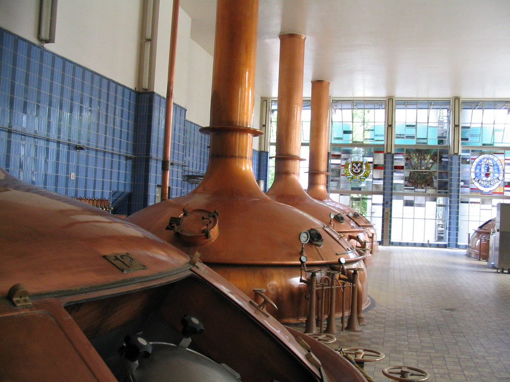 Learn how beer is brewed at the Beck's tour.
