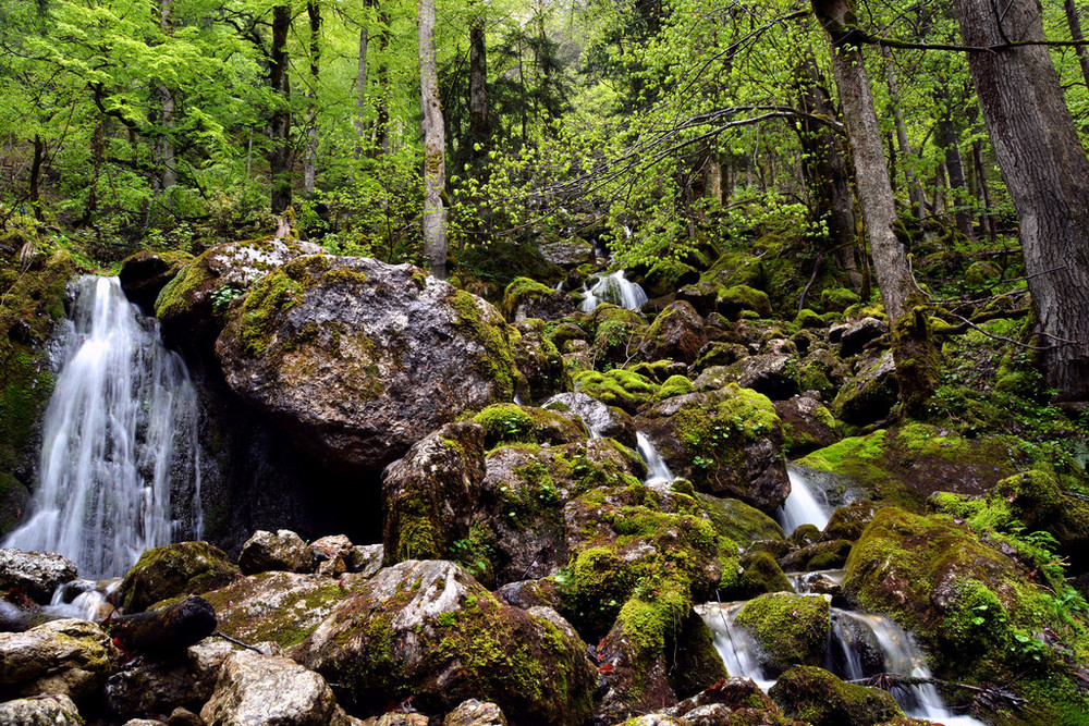 Small waterfalls in the forest of Berchtesgaden.