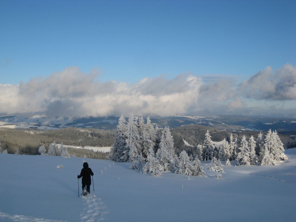 Black Forest Highlands in the winter.