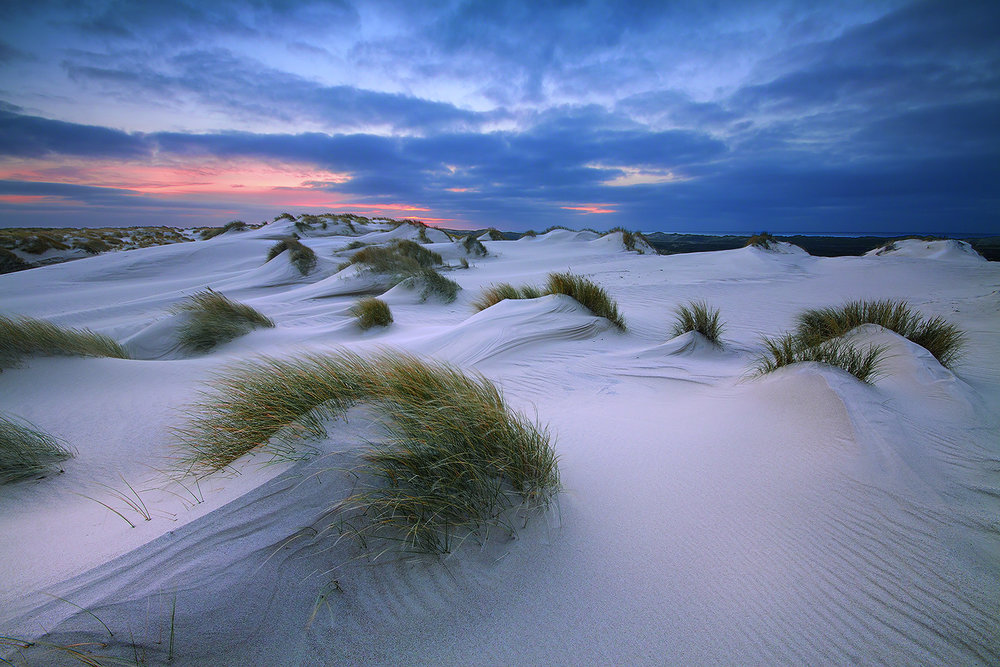 The Dunes of Wadden Sea