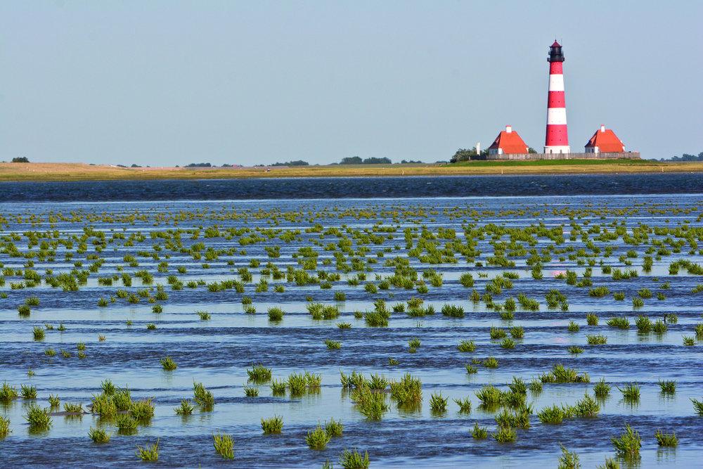 Watt Westerhever - Wadden Sea