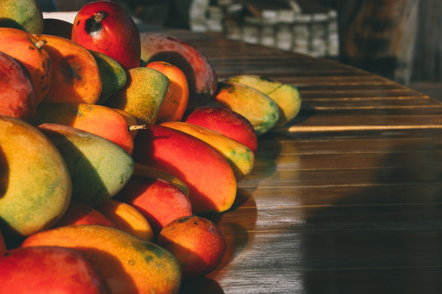 FruitPlanting_07.jpg