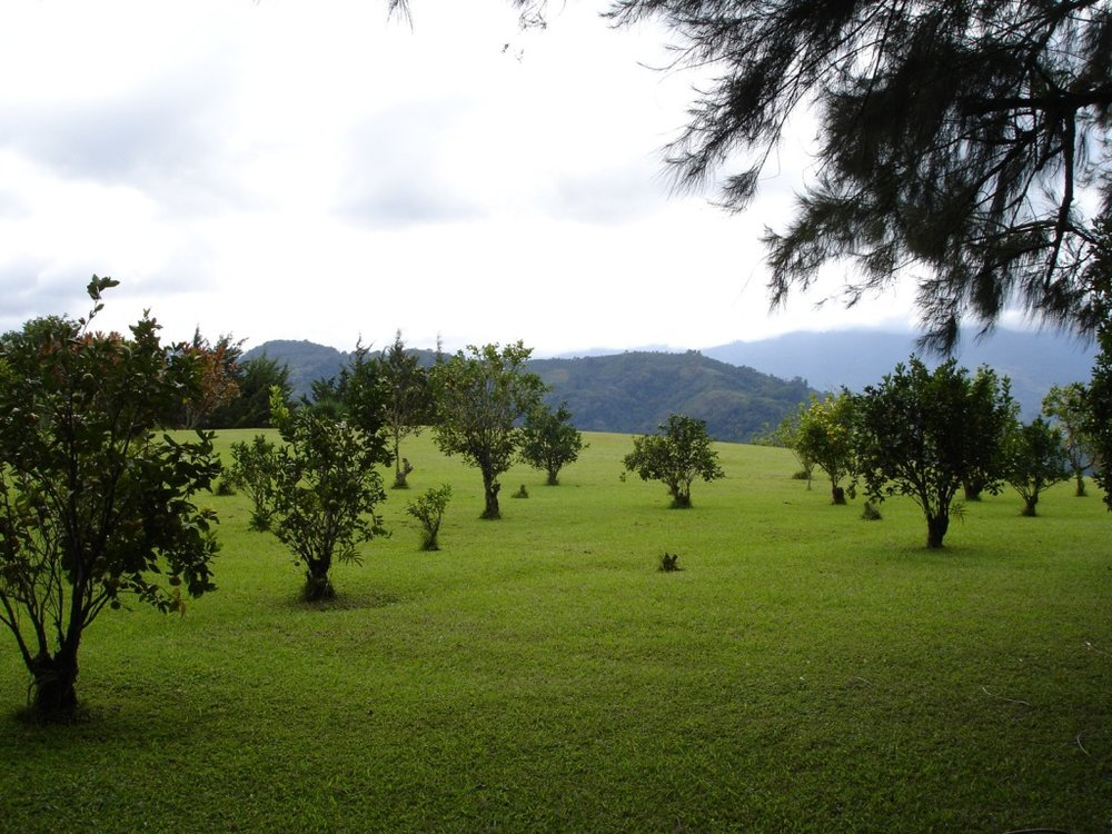 7 Landscape.jpg