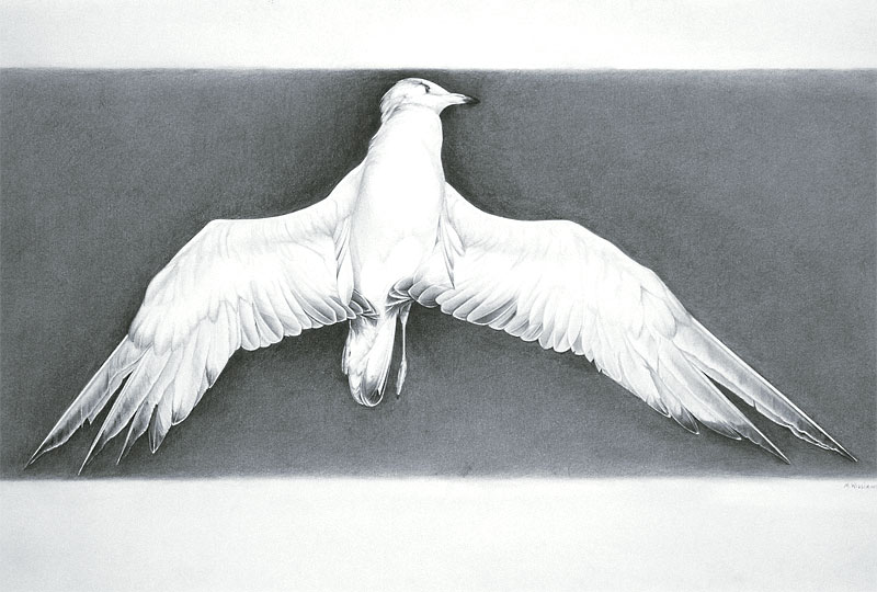 "End of Flight, 15.75"" x 36"""