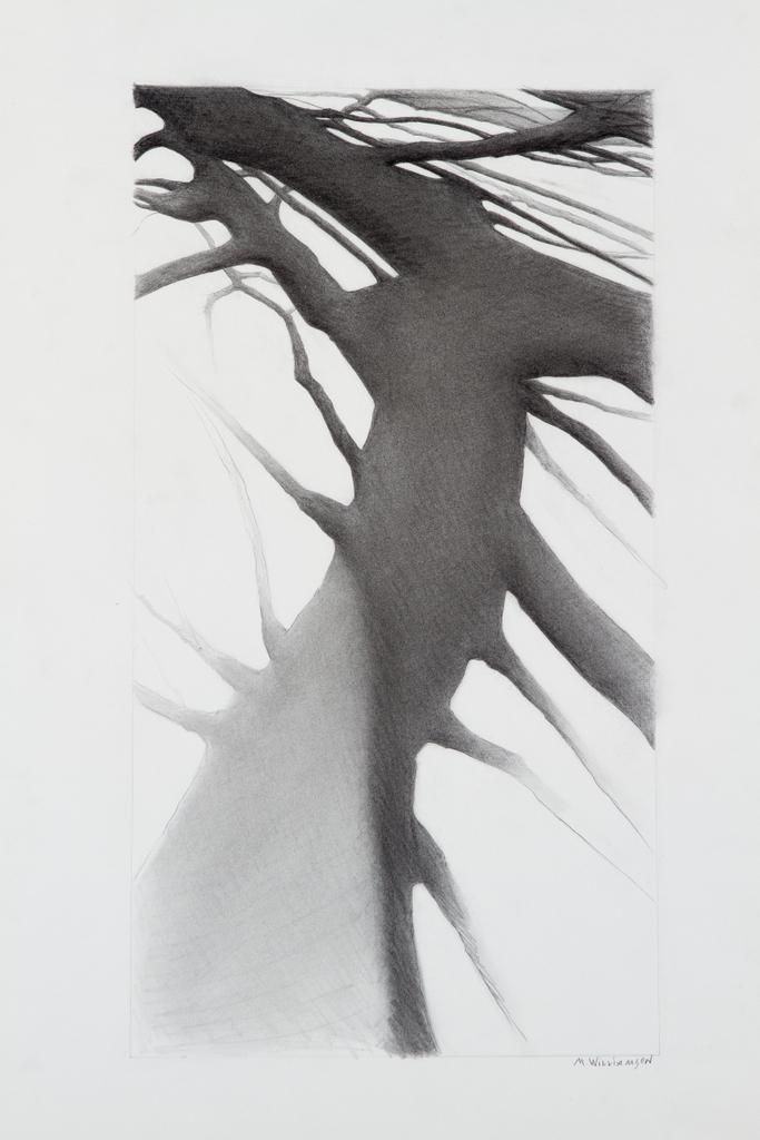 "Shadowscape #6, 24"" x 36"""
