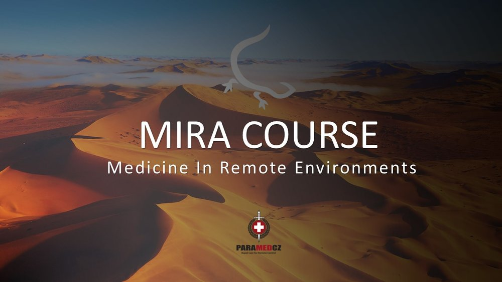 Medicine In Remote Areas - PDF for download