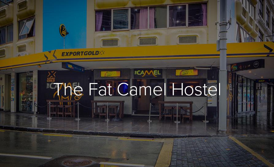 Fat-Camel.jpg