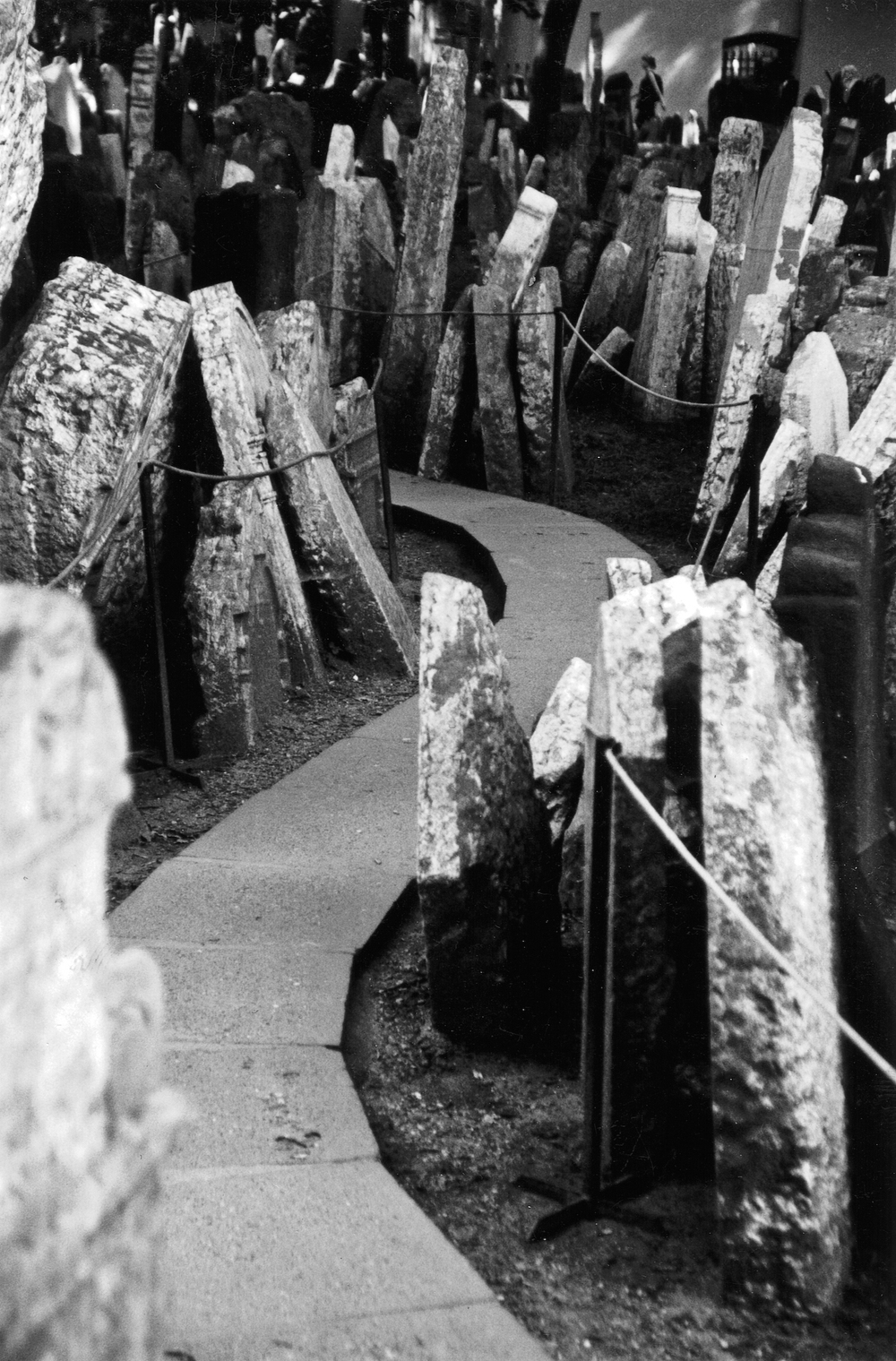 Prague Cemetery_CZ.jpg
