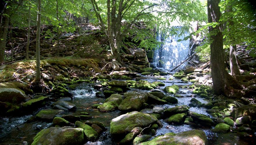 05-waterfall.jpeg