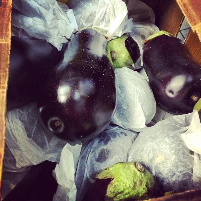 #Eggplant will be turnt up #levelstothiseggplant @maromedi @sinnie_ @natalieyuri